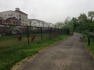 Conshohocken Dog PArk